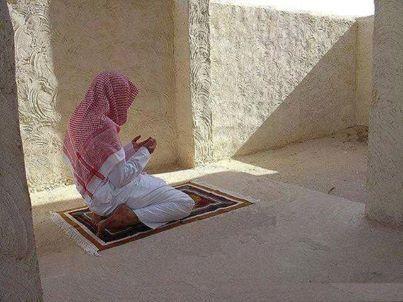 """Im Namen Allahs, des Allerbarmers, des Barmherzigen!  """"Und sag; (Alles) Lob gebührt Allah, Der sich keine Kinder genommen hat, und es gibt weder einen Teilhaber an Seiner Herrschaft, noch benötigt Er einen Beschützer vor Demütigung. (...)  (Sure 17;111 - Al Isra)"""