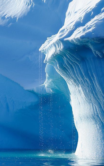 An iceberg or ice mountain is a large piece of freshwater ice that has broken off a glacier or an ice shelf and is floating freely in open water. It may subsequently become frozen into pack ice (one form of sea ice). As it drifts into shallower waters, it may come into contact with the seabed, a process referred to as seabed gouging by ice. Almost 91% of an iceberg is below the surface of the water.❄️