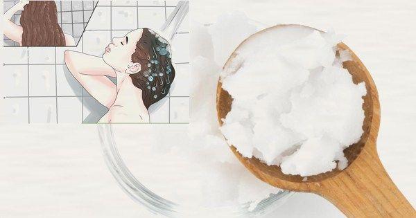 Olej kokosowy jest bardzo popularnym i często preferowanym środkiem do włosów na całym świecie. Przed rozpoczęciem korzystania z tego oleju- jego wielu pożytecznych funkcji, być może warto dowiedzi…