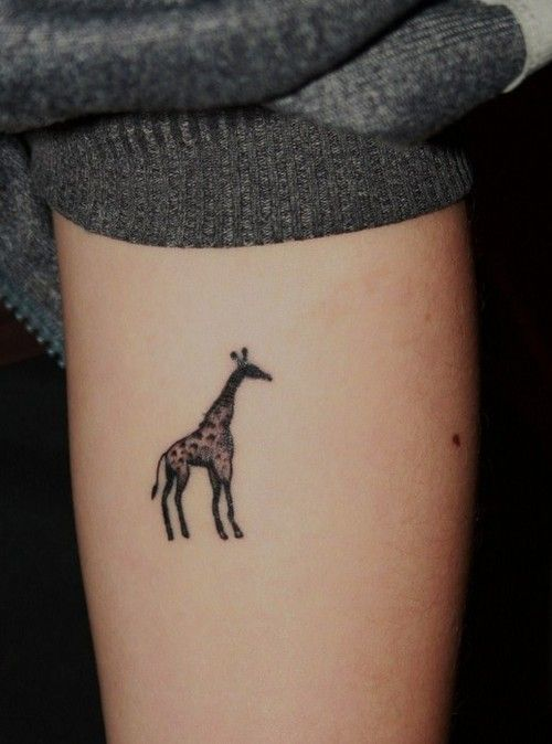 Meaning: stretch out your neck, be bold, share your faith, stretch yourself, go as far as you can