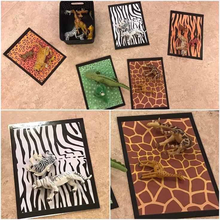 """@specialpedagogik_i_forskolan på Instagram: """"Ytterligare en sorteringslek. Här ser ni exempel på sortering efter mönster. Mönsterpapper är inköpta på…"""""""