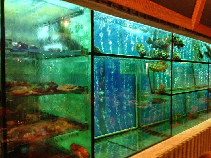Chinese Restaurant Aquarium Google Search Restaurant