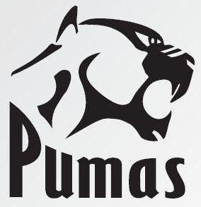 Pumas Rugby Union (South Africa)