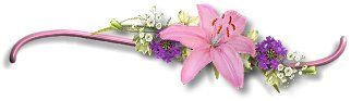 Flower Divider Graphics | The dates of the Solstices and Equinoxes can change each year but are ...