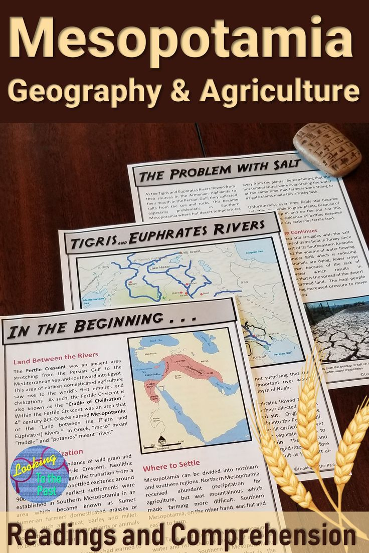 Teach Ancient Mesopotamia Geography and Agriculture to 6th grade or middle  school …   Social studies middle school [ 1104 x 736 Pixel ]