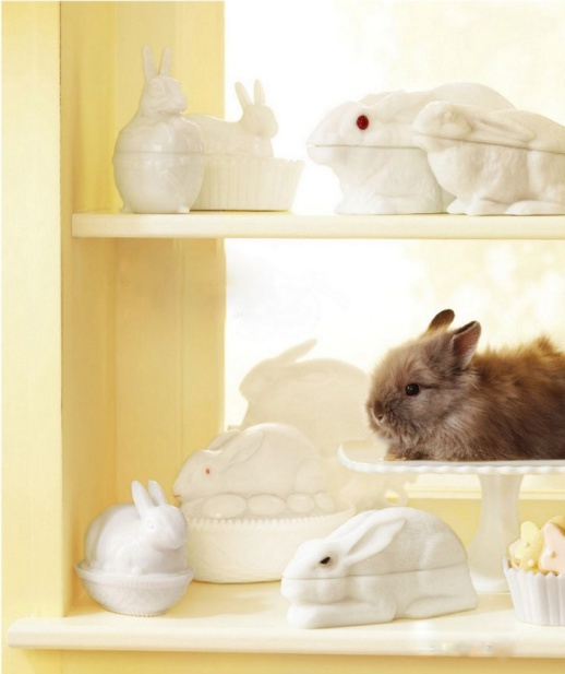 RabbitRabbit, Eggs Dishes, The Real, Candies Dishes, Covers Boxes, Easter Bunnies, Milk Glasses Eggs, Milkglass Eggs, Animal
