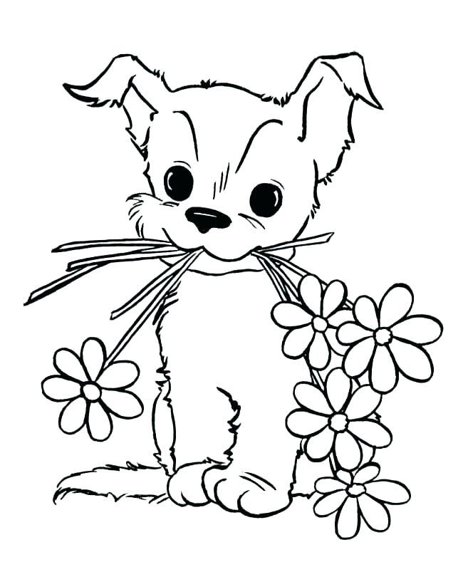 Baby Animal Coloring Pages Puppy Coloring Pages Dog Coloring