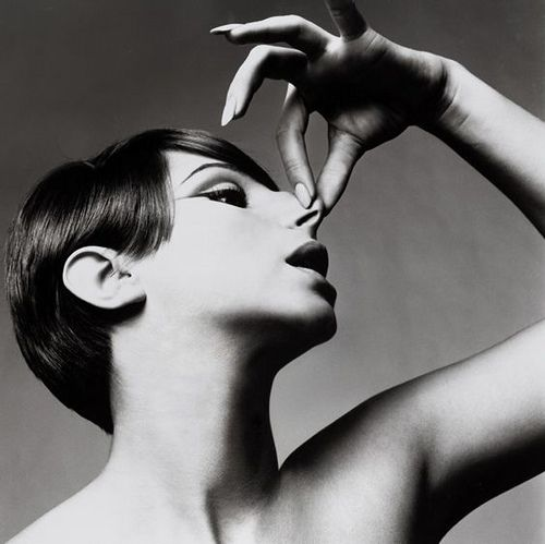 Barbra Streisand, 1965. Performance. This can be visually compared to the work of Irving Penn, who used hands and arms in his image to create shape. The arm introduces line to the image, and also creates visual interest.
