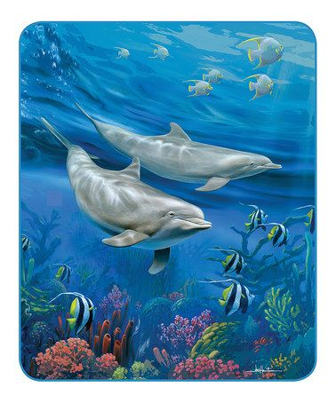 Loving This Dolphins Blanket On Zulily Zulilyfinds