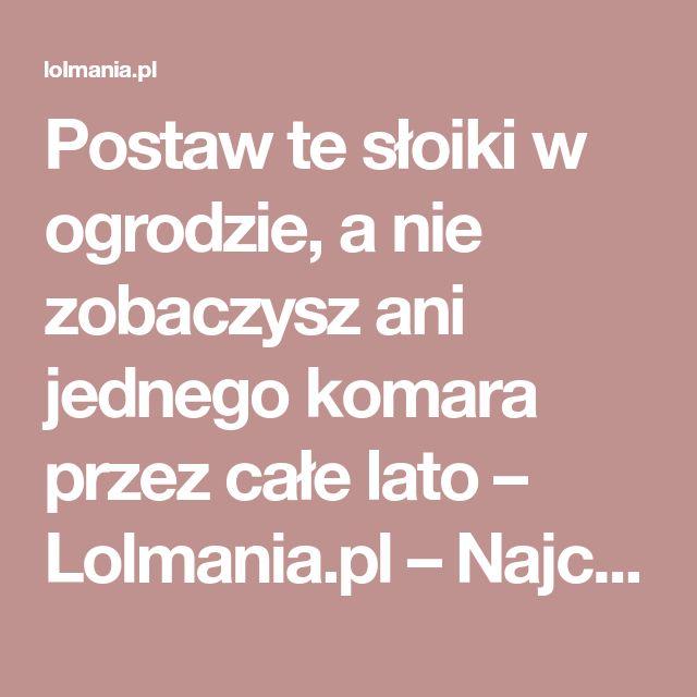 Postaw te słoiki w ogrodzie, a nie zobaczysz ani jednego komara przez całe lato – Lolmania.pl – Najciekawsze artykuły w sieci