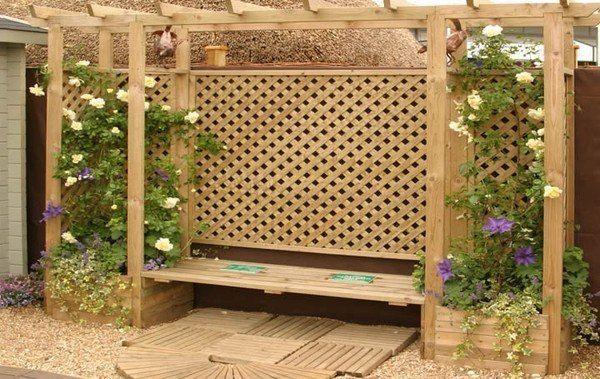 Мой сад - мир идей