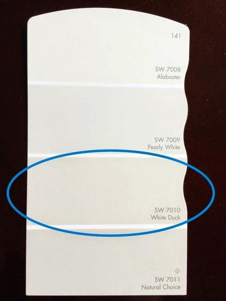 natural choice by sherwin williams - Google Search in 2020 ...