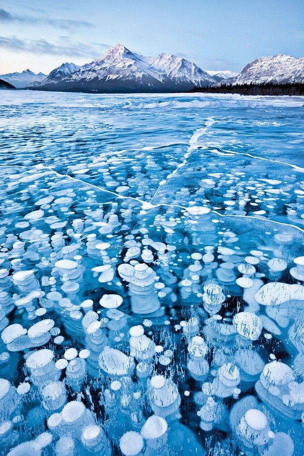 Frozen bubbles in a Canadian lake