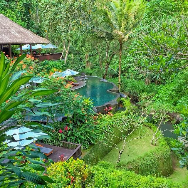 A peaceful corner of Maya Ubud Resort, Bali. Image tweeted by Maya Ubud Resort Spa ‏@MayaUbud