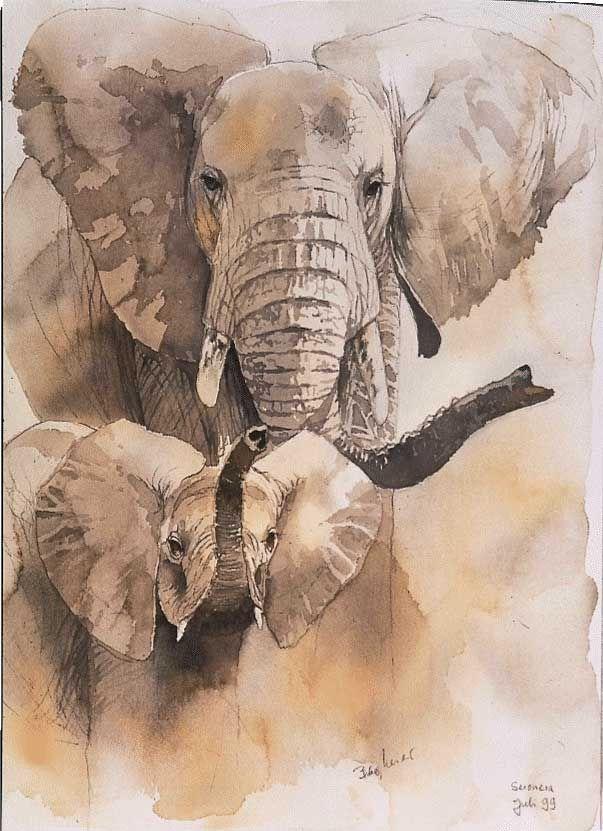 Elefantenmutter-verteidigt-