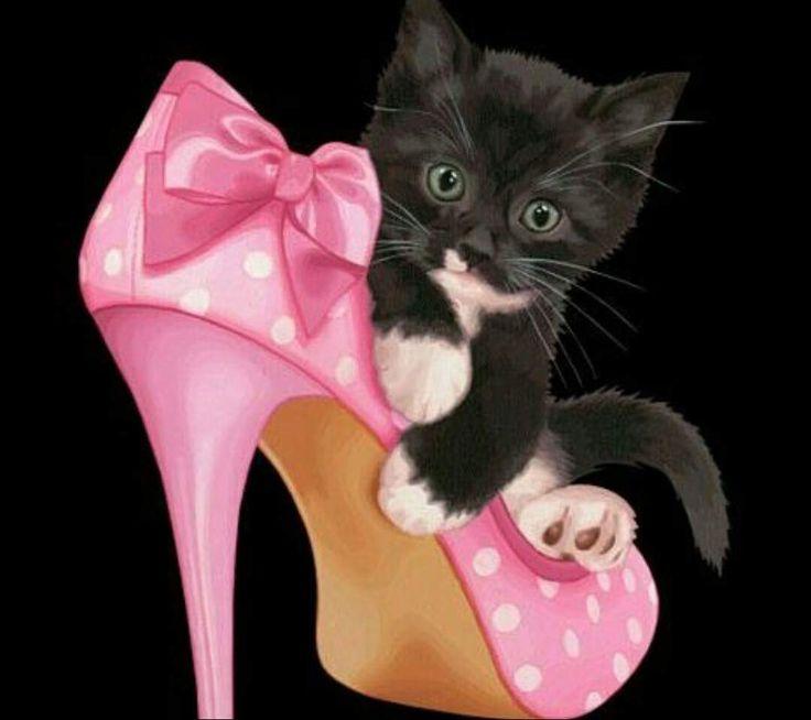 картинка с днем рождения котенок в туфельках несколько капель распределятся