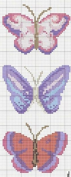 1000  images about butterfly on pinterest