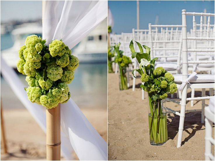 Viburnum arbor swags and then paired with calla lilies in nice tall vases along the aisle.