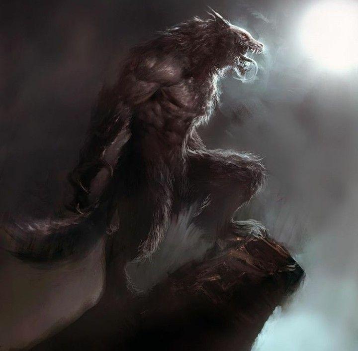 Pin De Ochotattoo Em Werewolves Lobisomens Lobisomem Arte Lobisomem