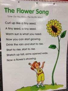 preschool song about growing a flower