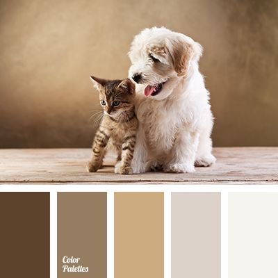 beige-gray, coffee beige colour, colour of natural skin, colour of nougat, colour of nut, dark brown, gray beige, gray-brown, light brown, monochrome brown palette, monochrome colour palette, mustard-brown,