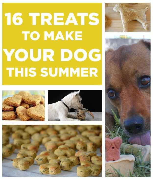 16 Treats You Should Make For Your Dog This Summer