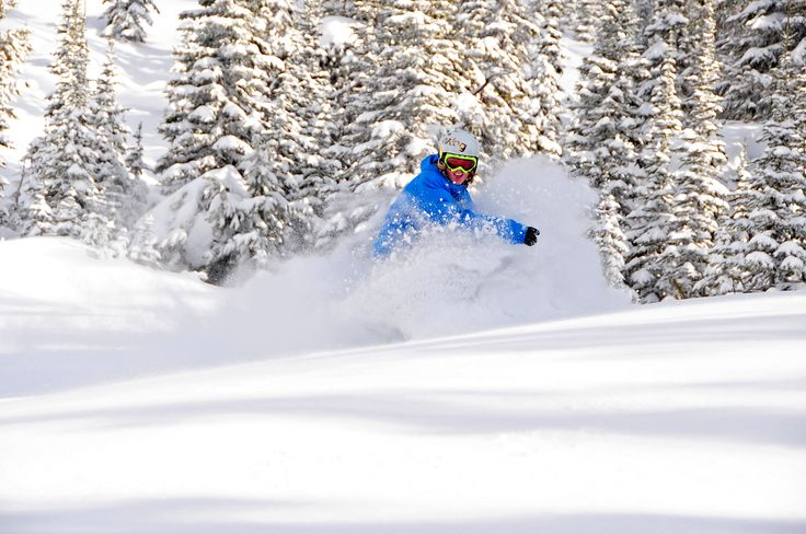Floating through powder... Photo credit Big White Ski Resort #snowboard #ski #Canada