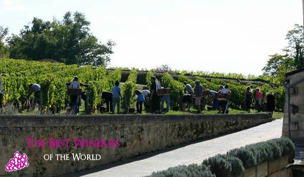St. Emilion Winery
