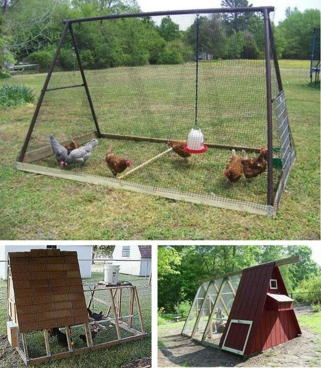 """All those times you've looked out the window at that old swing set and asked yourself, """"What should I do with that?"""" Some fencing, a few boards, a few nails, and a few chickens, you've got yourself a chicken tractor."""