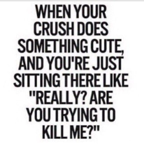 1000+ Secret Crush Quotes On Pinterest