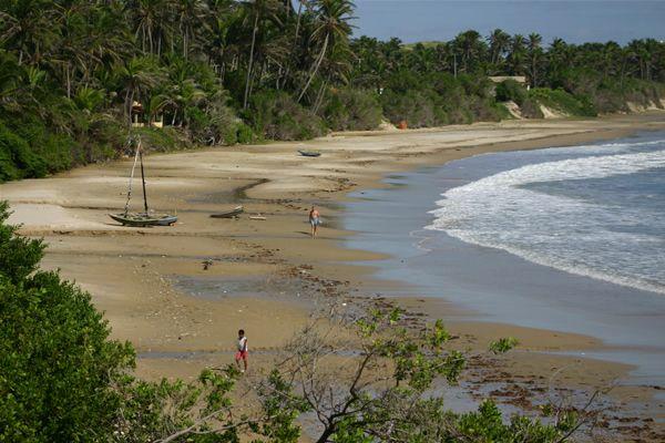 Praia da Baleia, Itapipoca, Ceará - Brasil  A praia da Baleia, localizada em Itapipoca, é tranquila e quase inabitada. Ao seu lado, ainda há outras praias semelhantes, como Praia do Maceió e das Pedrinhas. Coqueiros e algas dão a predominância da cor verde ao local, quebrada pelo colorido das canoas (FOTO: Wikipedia)