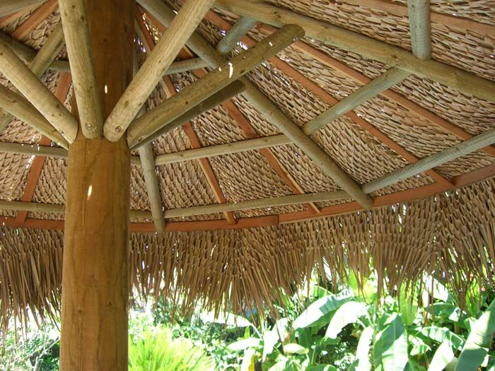 Palapa Umbrellas for Sale ~ Tiki Shack Importer