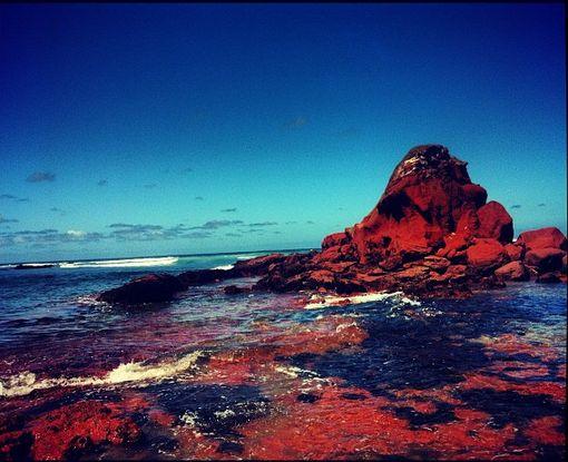 Beautiful red rocks in the ocean - Phillip Island, Victoria. Australia.