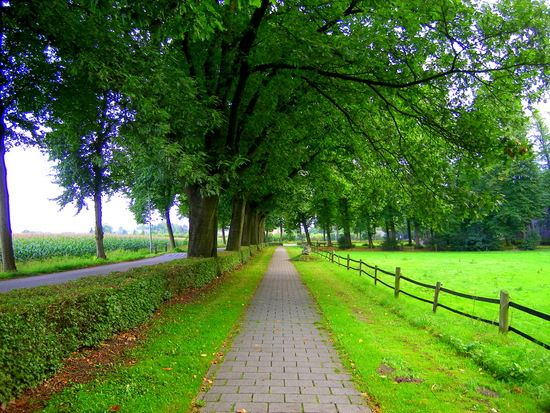 What a beautiful walkway in Holland...pavers along a country road!: Holland Pav, Country Roads, Holland Countryside, Travel Photo, The Netherlands, 15 Photo, Netherlands Countryside, Beautiful Walkways, Pretty Holland