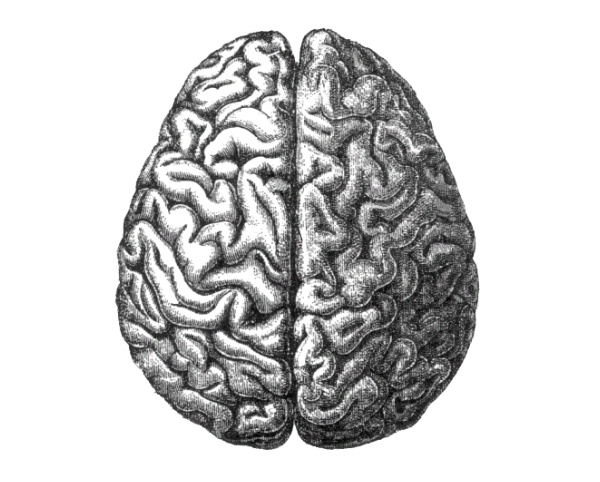 teen-brain-behavior-problem-solving-anal-destruction-video-angelica