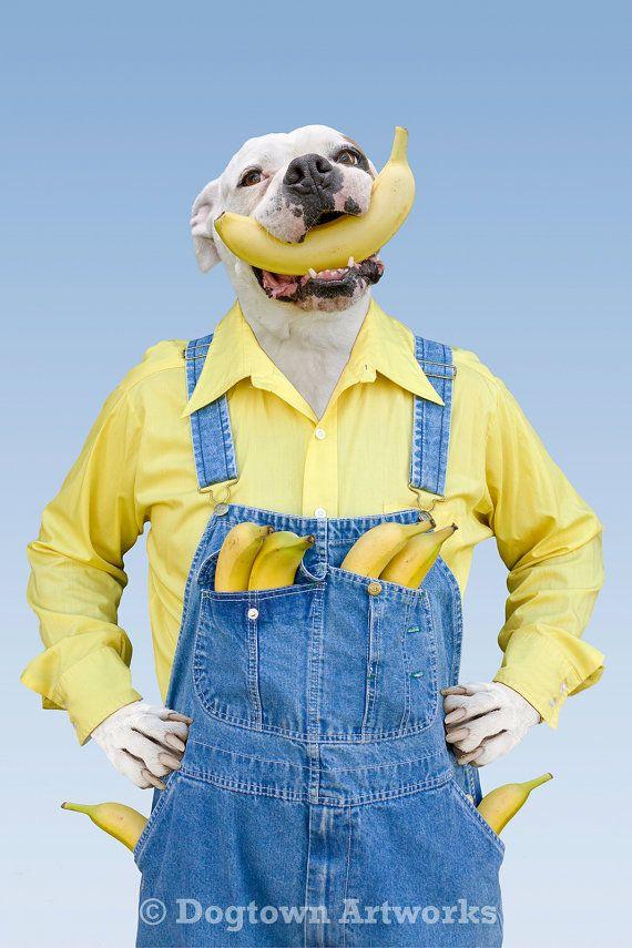 Bananes grande photo original mettant en par DogtownArtworks