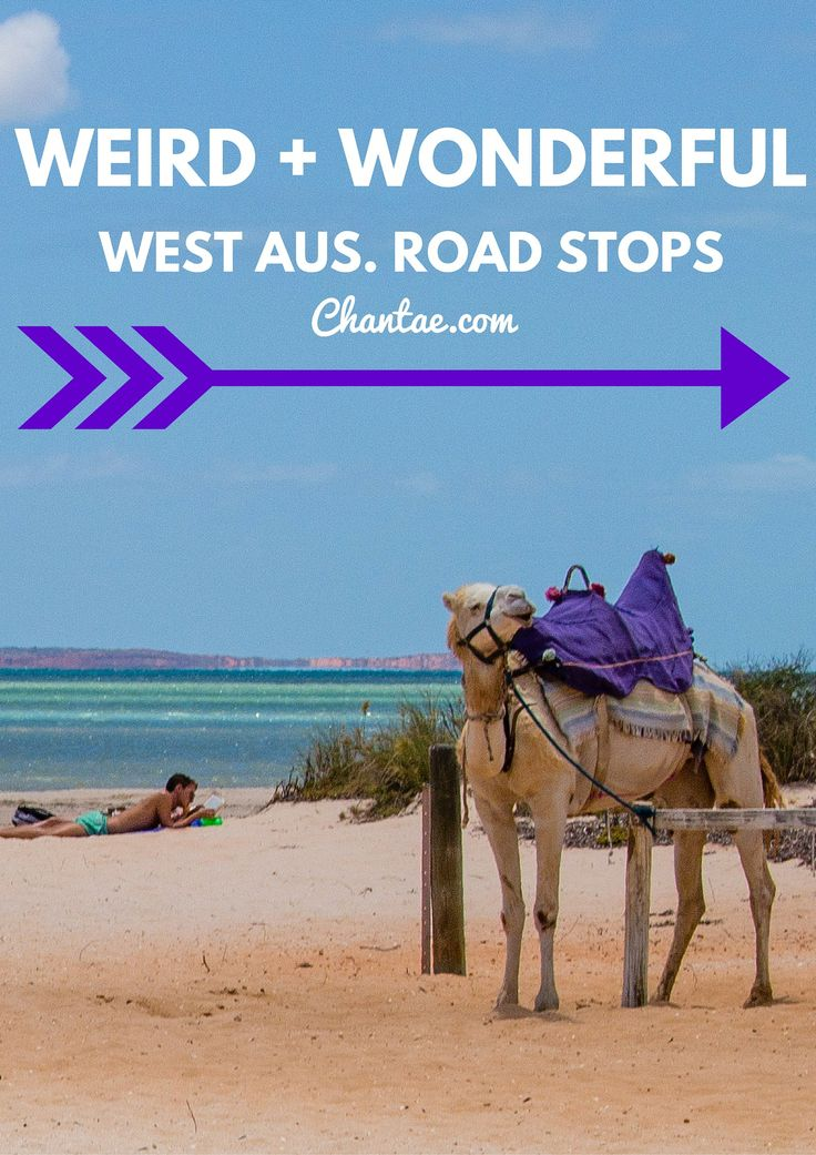 The Weird and Wonderful road stops in Western Australia. Click to see what strange things are in store.