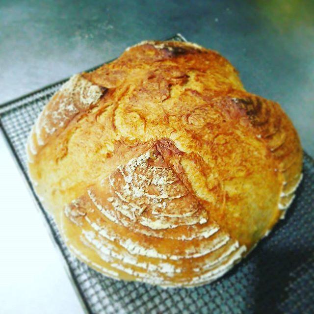Pinを追加しました!/モルトパウダーとアスコルビン酸の力は凄いかも いつもの1.5倍の大きさになった #cooking #bread #campagne #赤サフ #ルスドオル #加水率70%
