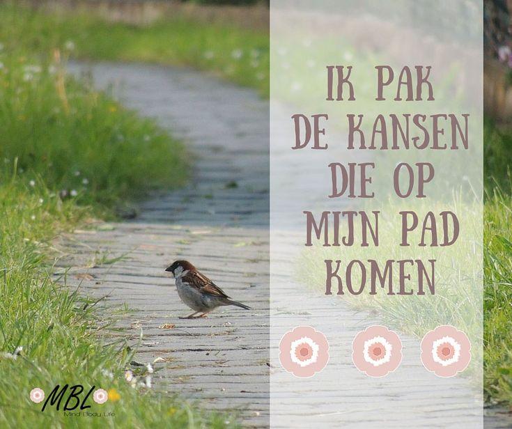positieve affirmatie, mijn pad via mindbodylife.nl. Wat positieve affirmaties zijn en hoe ze je beinvloeden.