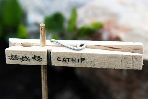 Garden marker idea- might be willing to take them apart and spray paint them before I write the plant name on them.