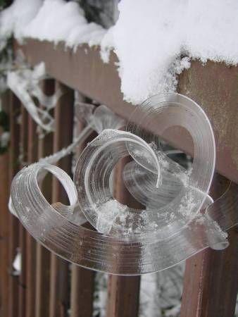 Fiori di brina: il ghiaccio vaporoso che sembra scolpito da folletti (FOTO)