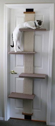 SmartCat Multi-Level Cat Climber. This is a seriously cool example of ingenuity for tight space cat owners. See more of the best cat scratching posts on my website.