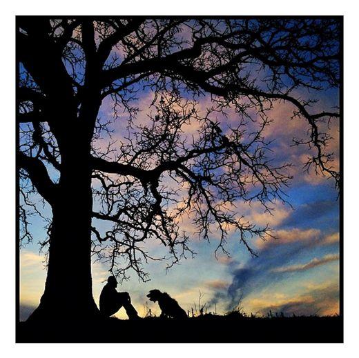 Exposure: Mark Hirsch and 'that tree'  Lauren Crabbe    Published: Jun 21, 2013 at 17:07:02 UTC