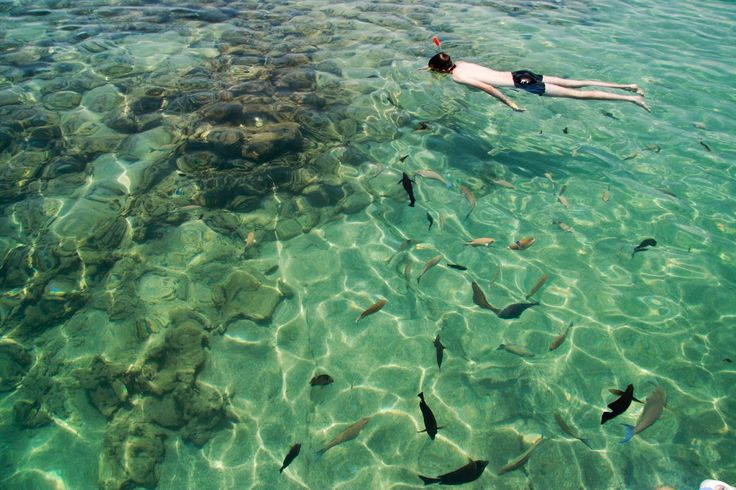 Shark's Bay, Sharm El Sheik, Egypt,