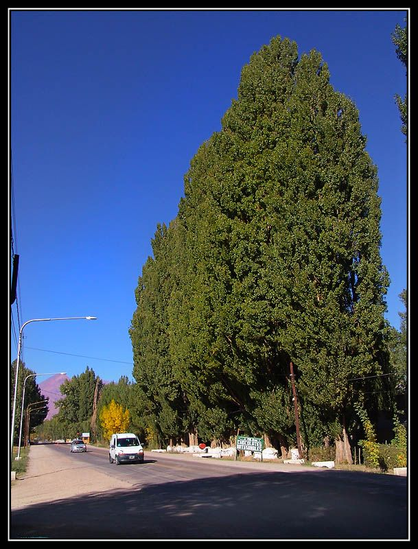 Uspallata - Uspallata, Mendoza