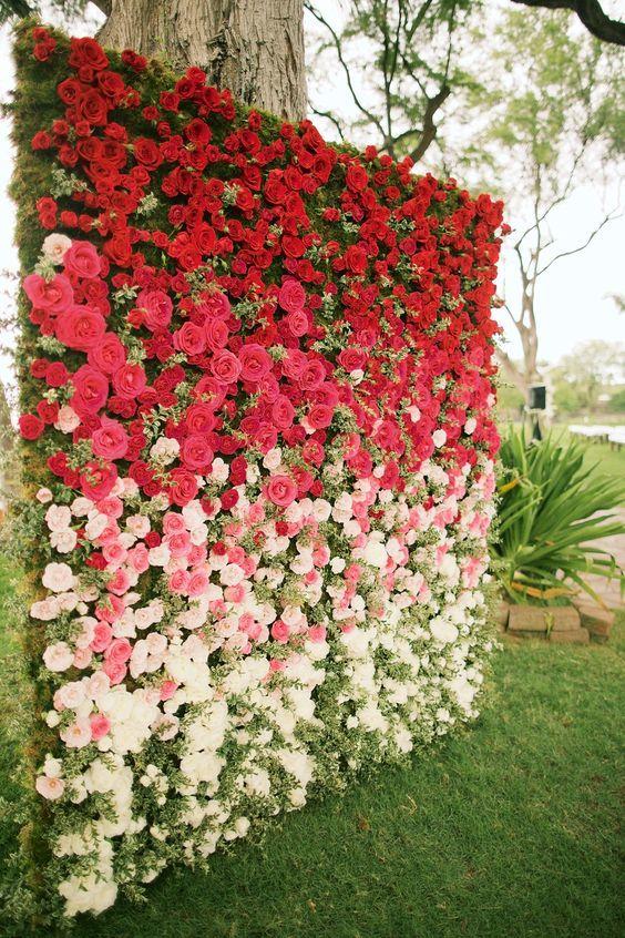 Ombre rose backdrop by Teresa Sena Design - Anna Kim Photography: Флористы придумали. Внутри каркас, на который помещается пористый материал, намоченный в воде, в который втыкают срезанные цветы. Говорят, что сначала придумали это для оформления свадебных церемоний, на которых всегда бывает много цветов. На фоне стен фотографируются молодые. Сочетания цветов бывает изумительно красивы. Чаще всего используют розы, иногда одни головки без зелени.