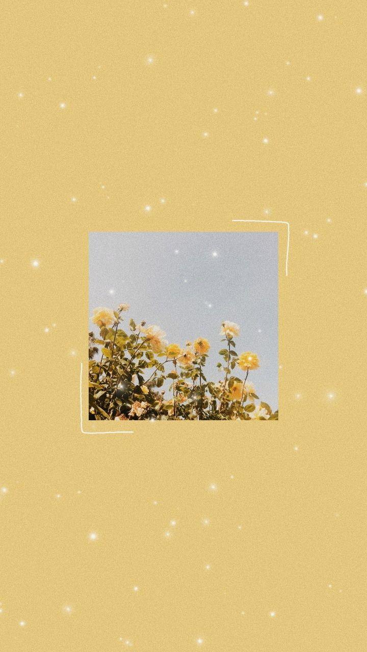 Pin By Emur On Pinwheel Cute Tumblr Wallpaper Painting Wallpaper Iphone Wallpaper Tumblr Aesthetic