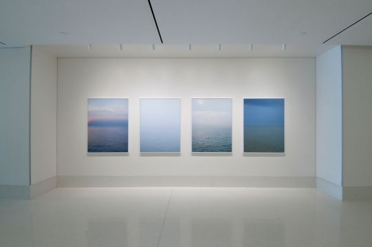Somewhere in the Middle, installation view (Summer) (2010-11)- Catherine Opie