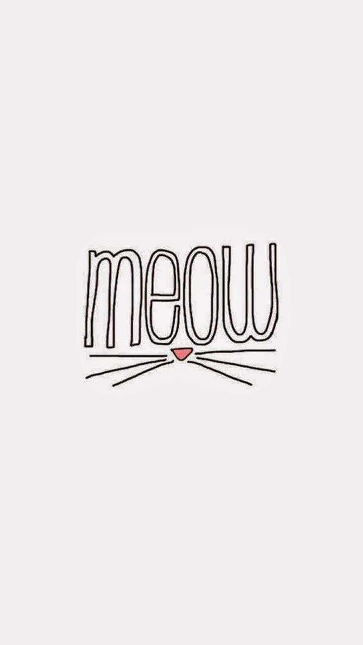 Iphone 5 wallpaper tumblr music - Meow Find More Inspirational Wallpapers For Your Iphone Android Prettywallpaper