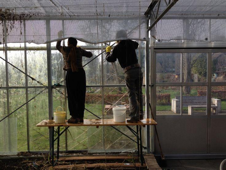 LUNCH: Net buiten Haarlem ligt het 'Landje van de boer' Een pluk- en proeftuin met groentebedden, kruidenperken, bloemenborders en een boomgaard. Iedereen die meewerkt aan de tuin is vrijwilliger. Elke donderdag kun je er lunchen. Het geld wat ermee wordt verdiend wordt weer terug in de tuin gestoken. http://landjevandeboer.nl/